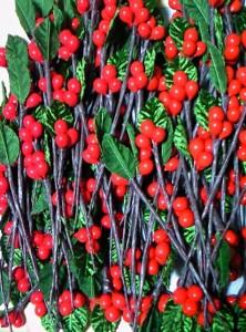 赤いペップと葉