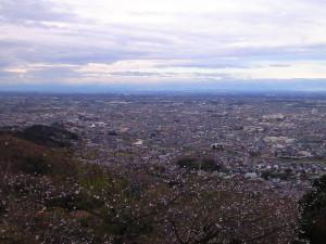 太平山よりの眺め
