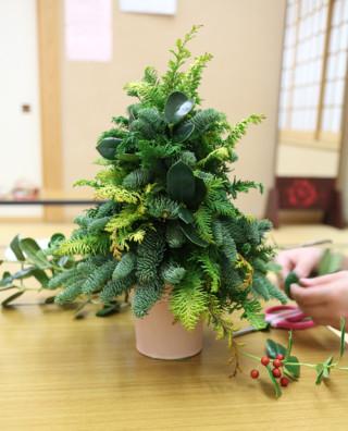 フレッシュクリスマスツリー