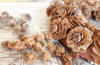 シダローズのリースと木の実